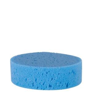 Paardenspons blauw rond